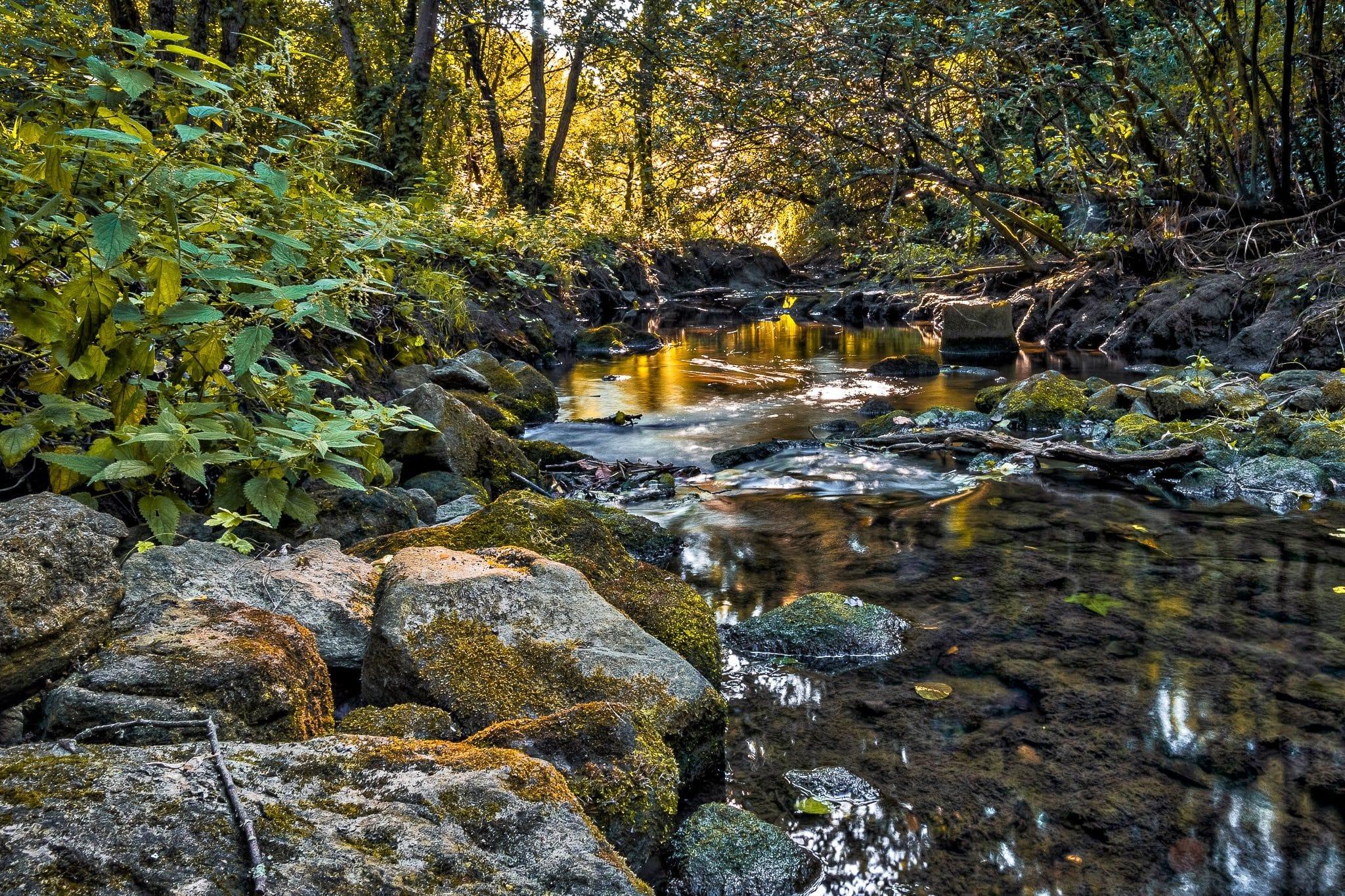 Le ruisseau du Floubalay